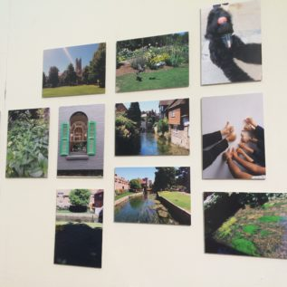 A selection of images arranged on a wall