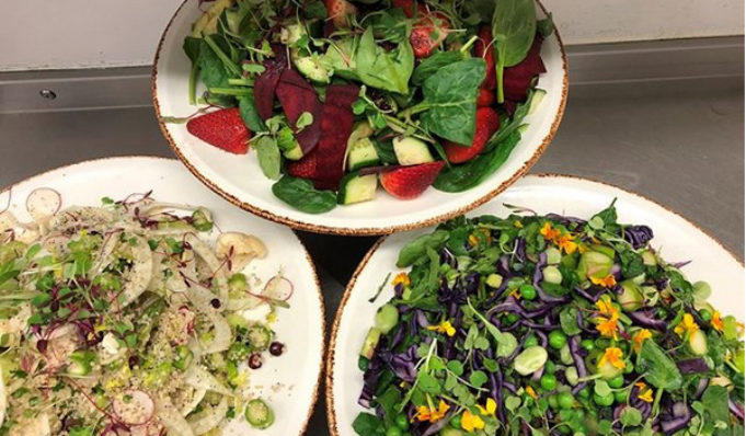 Cafe  salad-bar