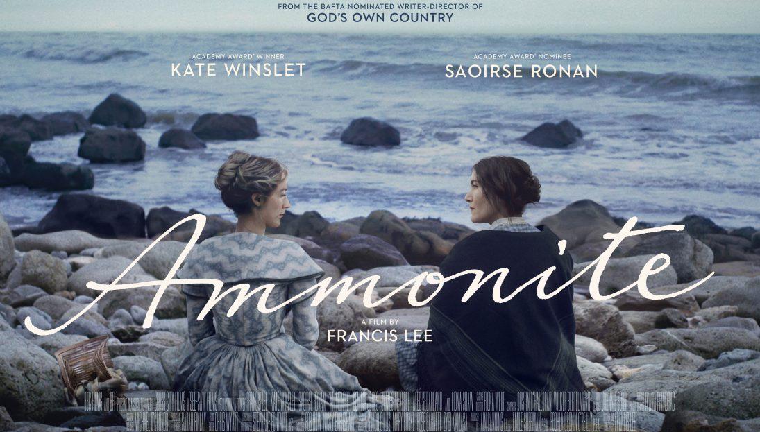 Ammonite_Quad